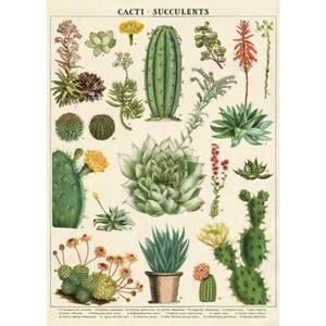 Cacti and Succulent Wrap & Poster