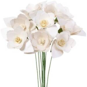 Mini Magnolia Flower Kit - Whites