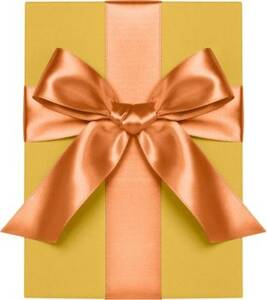 Poppy Satin Ribbon