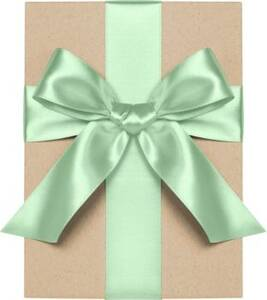 Mint Satin Ribbon