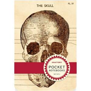 Anatomy Pocket...