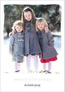 Foil Stamped Chic Frame Merry Christmas Holiday Photo Card