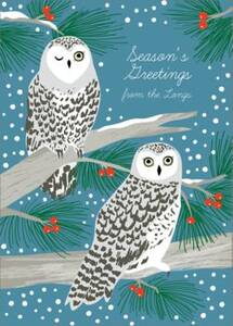 Snowy Owls Holiday Card